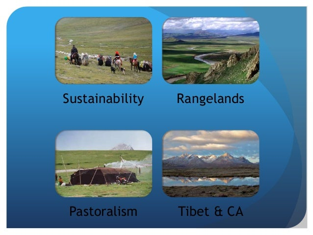 In the High Altitude Rangelands… An integrative model = multiple dimensions  Environmental (livestock, ecosystem services...