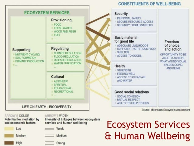 1. Social-Ecological Systems (SES) The high altitude rangelands are coupled social-ecological systems  Humans & nature, c...
