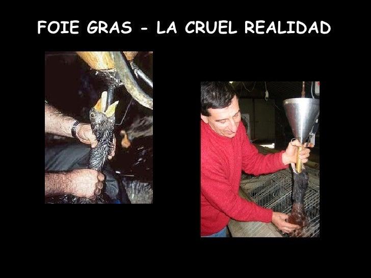 FOIE GRAS - LA CRUEL REALIDAD