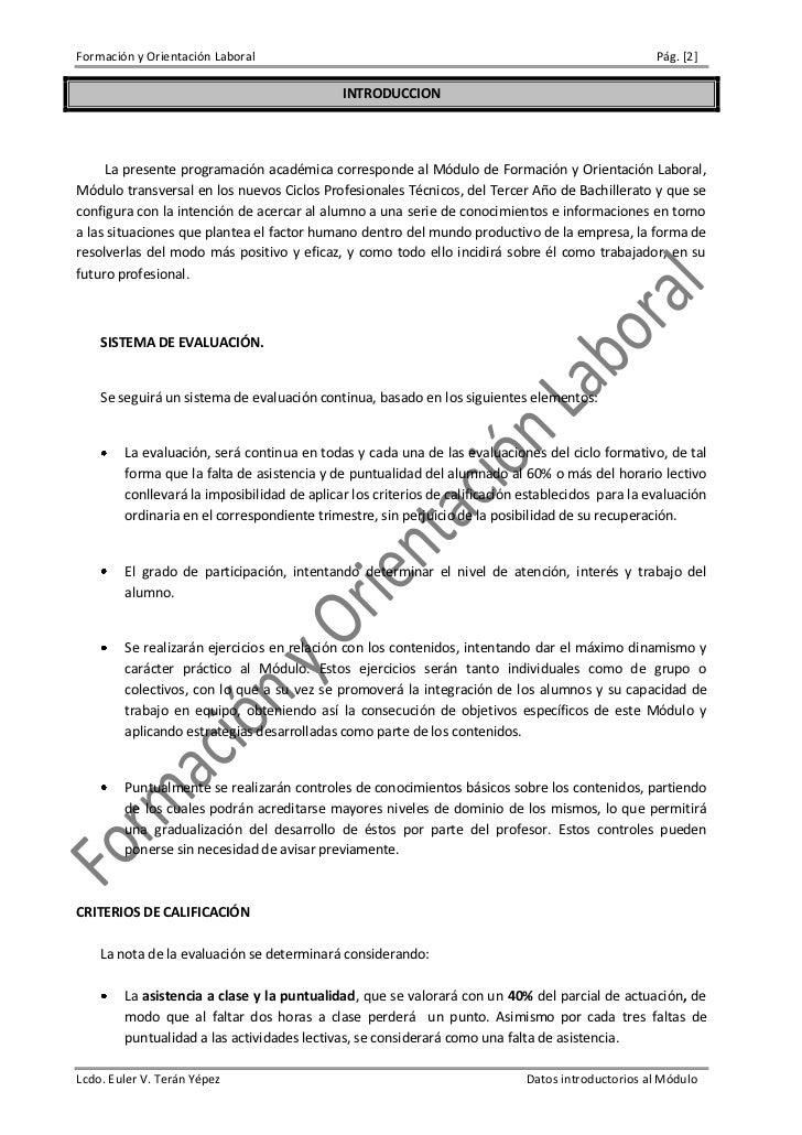 Formación y Orientación Labora. 2009 Slide 2