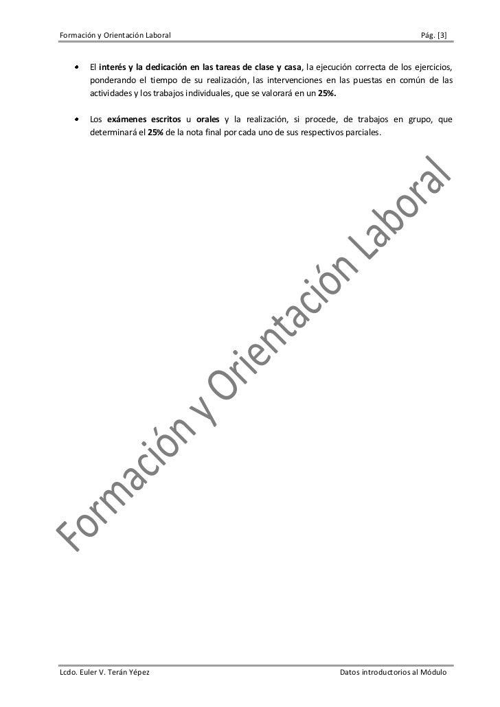 Formación y Orientación Labora. 2009 Slide 3