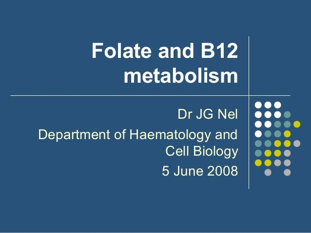 Folate and B12 metabolism Dr JG Nel Department of Haematology and Cell Biology 5 June 2008