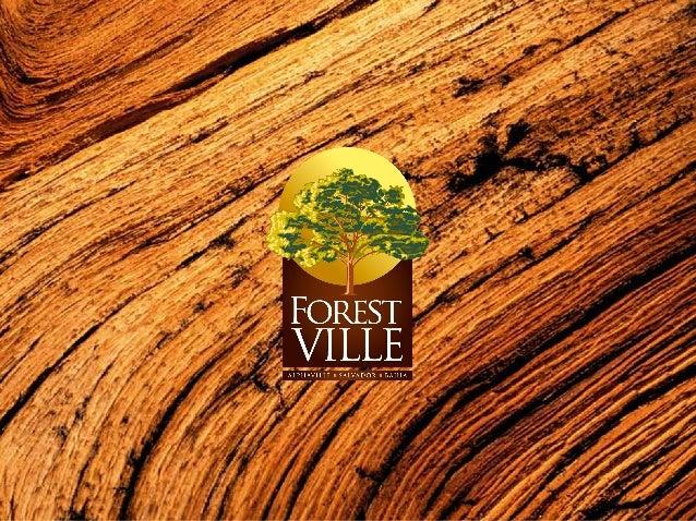 Forest Ville : Salvador - BA