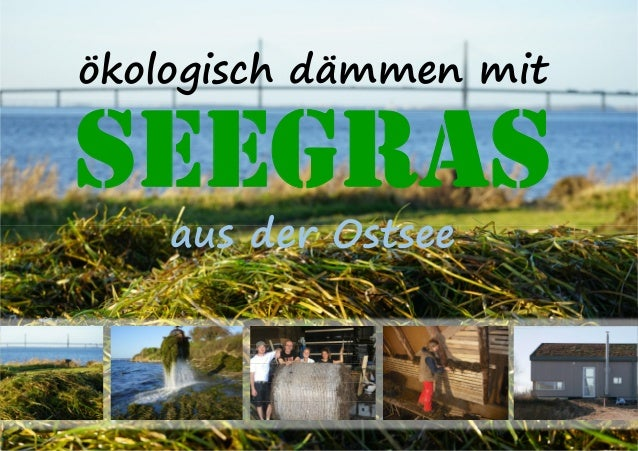 ökologisch dämmen mit SEEGRAS aus der Ostsee