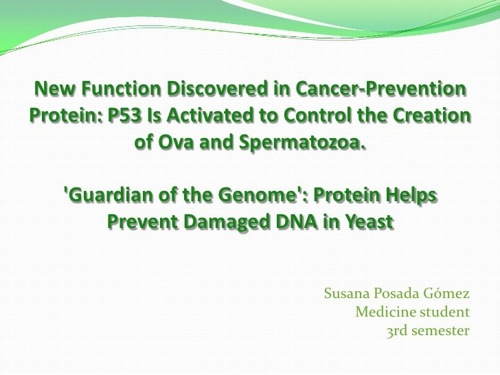 New Function Discovered in Cancer-Prevention Protein: P53 Is Activated to Control the Creation of Ova and Spermatozoa. 'Gu...