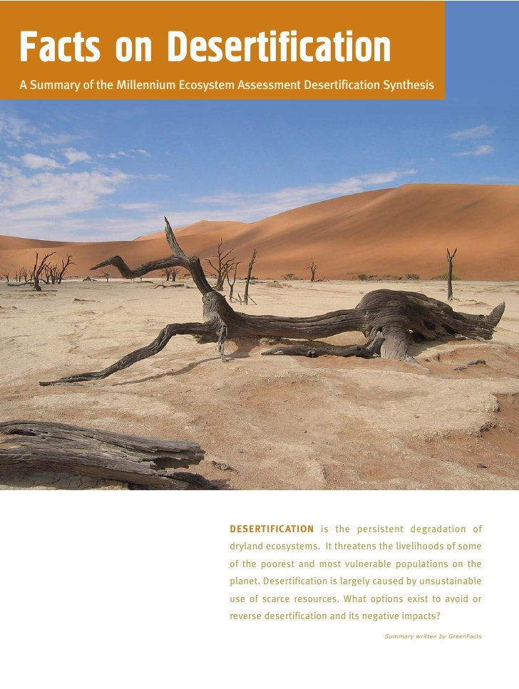 A summary of desertification