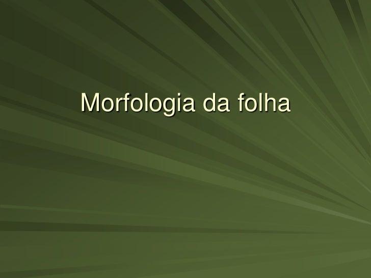Morfologia da folha