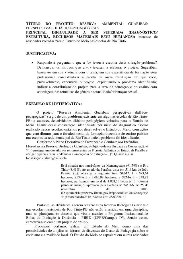 Super ORIENTAÇÕES PARA A ELABORAÇÃO DO ESBOÇO DO PROJETO DIDÁTICO-PEDAGÓGICO XR02