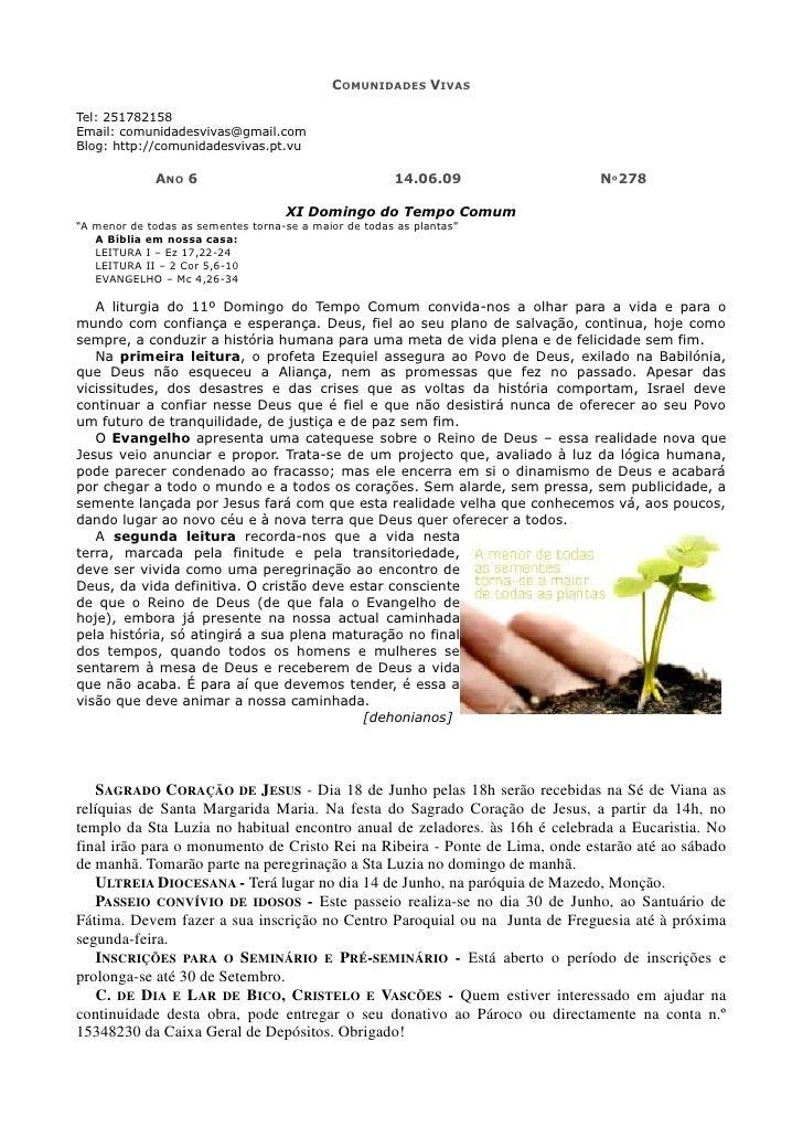 COMUNIDADES VIVAS  Tel: 251782158 Email: comunidadesvivas@gmail.com Blog: http://comunidadesvivas.pt.vu               ANO ...