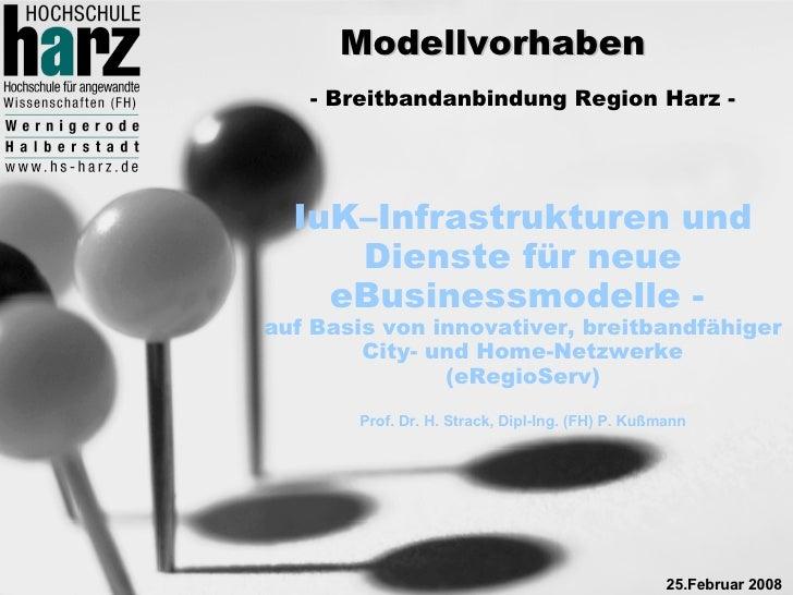 Modellvorhaben    - Breitbandanbindung Region Harz -       IuK–Infrastrukturen und      Dienste für neue     eBusinessmode...