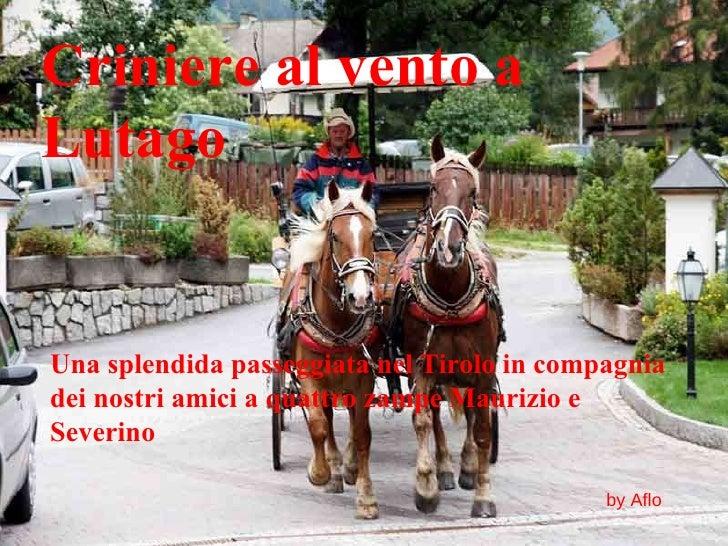 Criniere al vento a Lutago Una splendida passeggiata nel Tirolo in compagnia dei nostri amici a quattro zampe Maurizio e S...