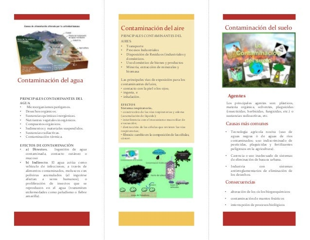 Contaminación del agua Contaminación del aire PRINCIPALES CONTAMINANTES DEL AIRES: • Transporte • Procesos Industriales • ...