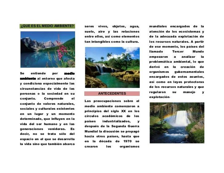 ¿QUE ES EL MEDIO AMBIENTE?<br />Se entiende por medio ambiente al entorno que afecta y condiciona especialmente las circun...