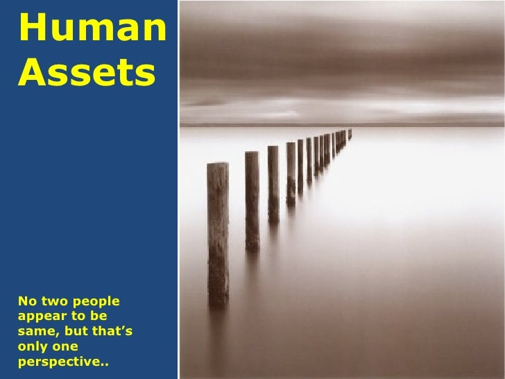 Human Assets No two people appear to be same, but that's only one perspective..