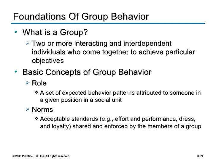 behaviour groups essay
