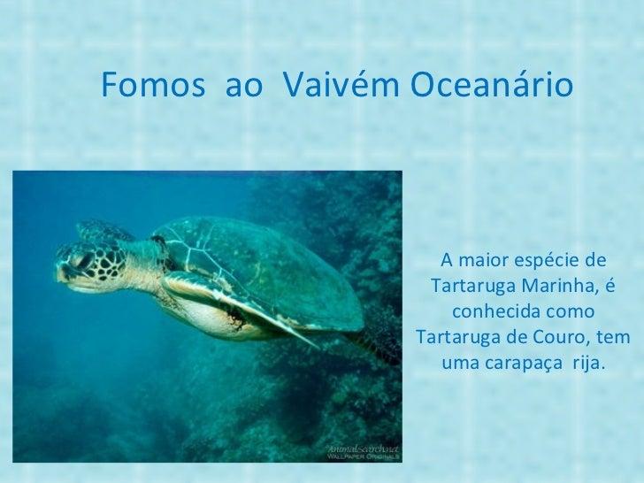 Fomos ao Vaivém Oceanário                  A maior espécie de                 Tartaruga Marinha, é                    conh...
