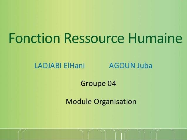 Fonction Ressource Humaine LADJABI ElHani AGOUN Juba Groupe 04 Module Organisation