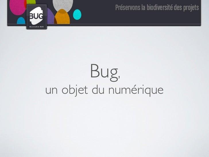 Bug,un objet du numérique