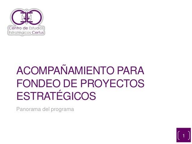 ACOMPAÑAMIENTO PARA FONDEO DE PROYECTOS ESTRATÉGICOS Panorama del programa 1
