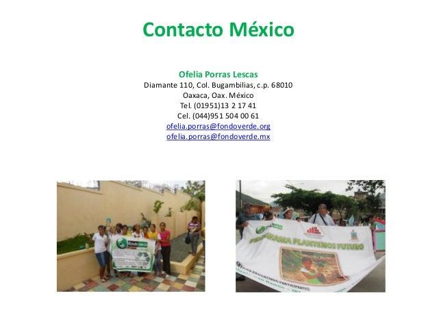 Contacto México Ofelia Porras Lescas Diamante 110, Col. Bugambilias, c.p. 68010 Oaxaca, Oax. México Tel. (01951)13 2 17 41...