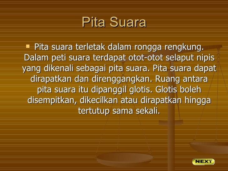 Pita Suara  Pita suara terletak dalam rongga rengkung.Dalam peti suara terdapat otot-otot selaput nipisyang dikenali seba...