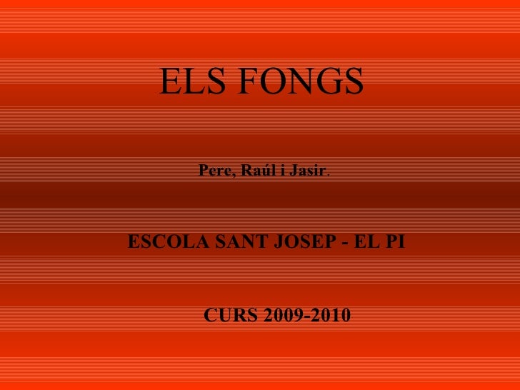 ELS FONGS Pere, Raúl i Jasir . ESCOLA SANT JOSEP - EL PI CURS 2009-2010
