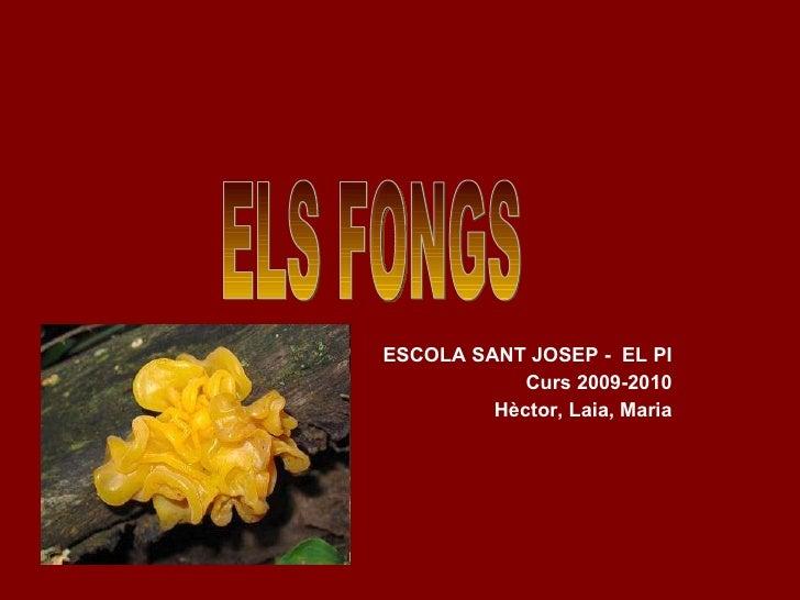 ESCOLA SANT JOSEP -  EL PI Curs 2009-2010 Hèctor, Laia, Maria ELS FONGS