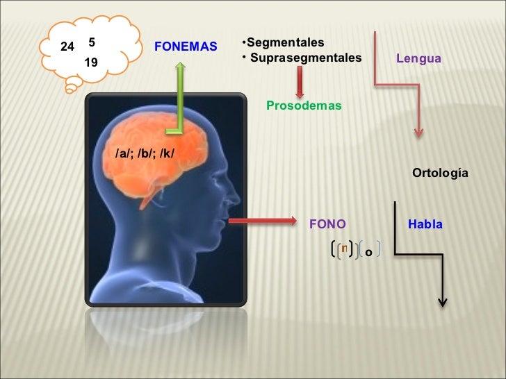 Fonología y Fonética Slide 3
