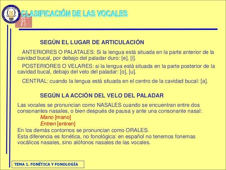 SEGÚN EL LUGAR DE ARTICULACIÓN   ANTERIORES O PALATALES: Si la lengua está situada en la parte anterior de la  cavidad bu...