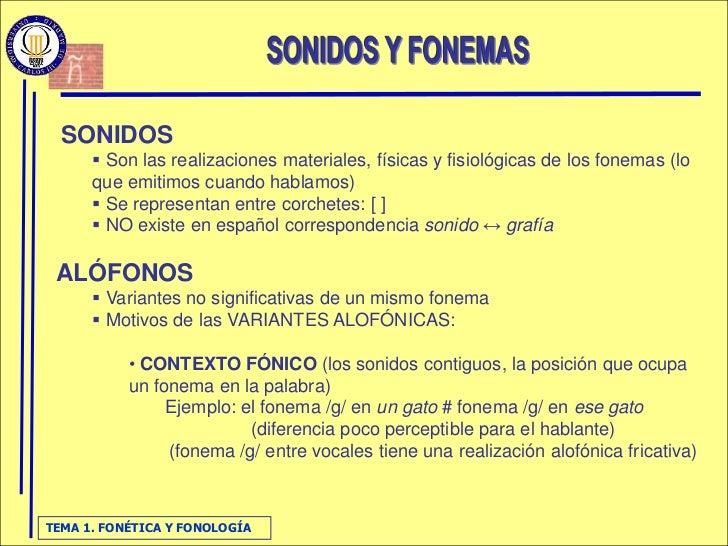FonéTica Y FonologíA Slide 3