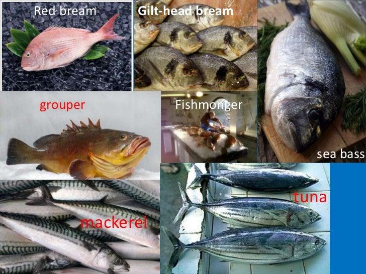Red bream<br />Gilt-head bream<br />grouper<br />Fishmonger<br />sea bass<br />tuna<br />mackerel<br />