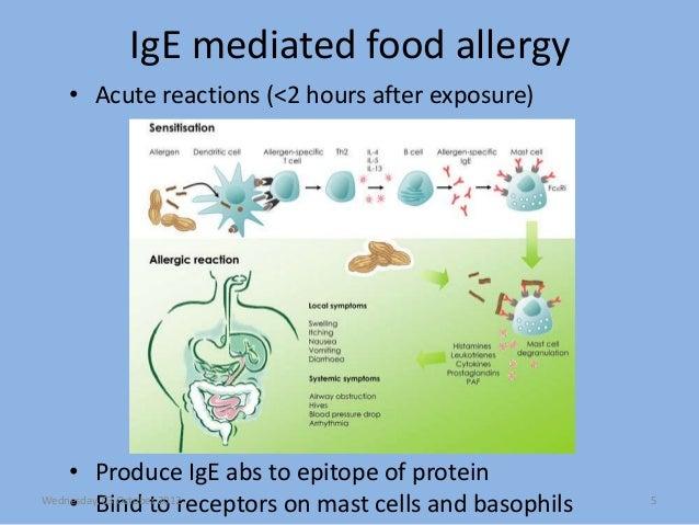 ige medierad allergi