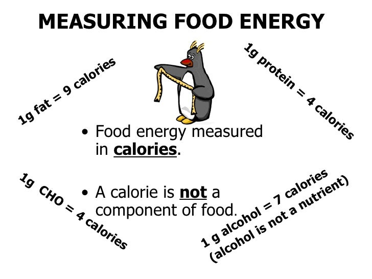 Food Nutrition And Culture