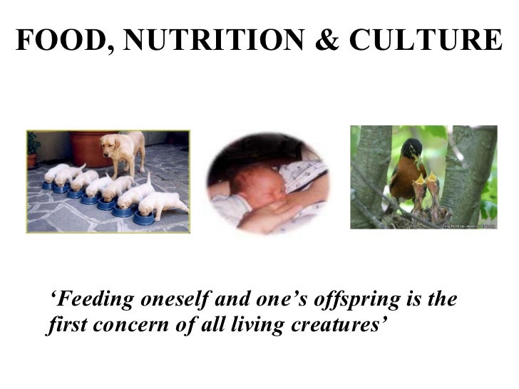 FOOD, NUTRITION & CULTURE ' Feeding oneself and one's offspring is the first concern of all living creatures'