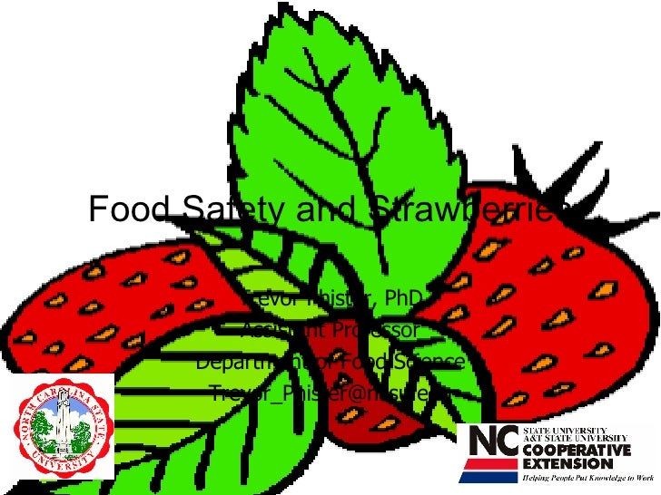 Food Safety and Strawberries Trevor Phister, PhD Assistant Professor Department of Food Science [email_address]