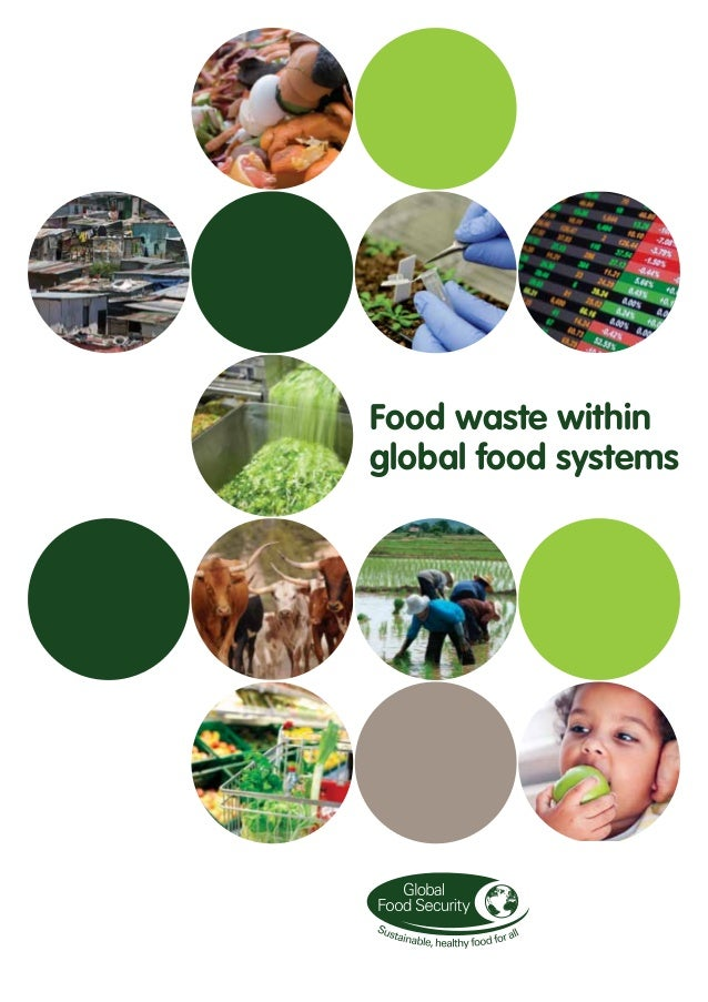 Food waste within global food systems