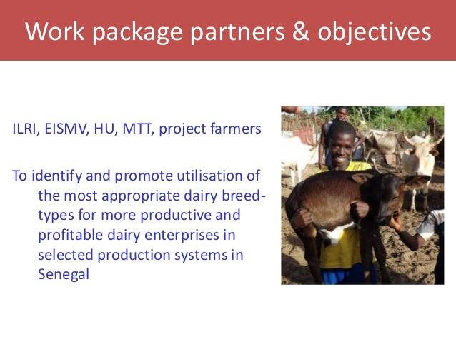 Senegal dairy genetics project: Work package 2 update Slide 2