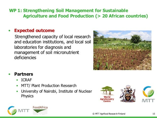 Master's thesis on food security