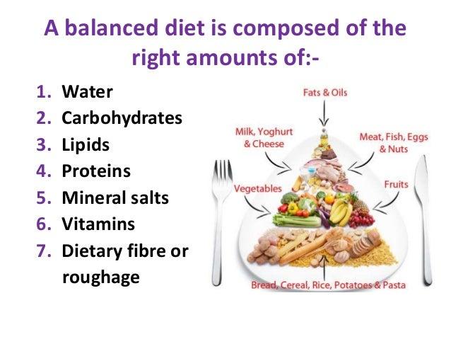 balanced diet fiber lipids carbs water