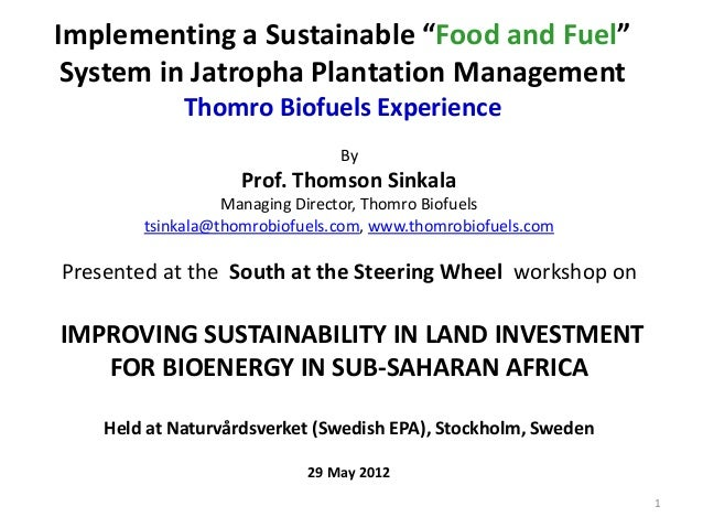 "Implementing a Sustainable ""Food and Fuel""System in Jatropha Plantation ManagementThomro Biofuels ExperienceByProf. Thomso..."