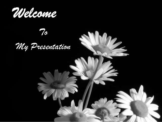 To My Presentation
