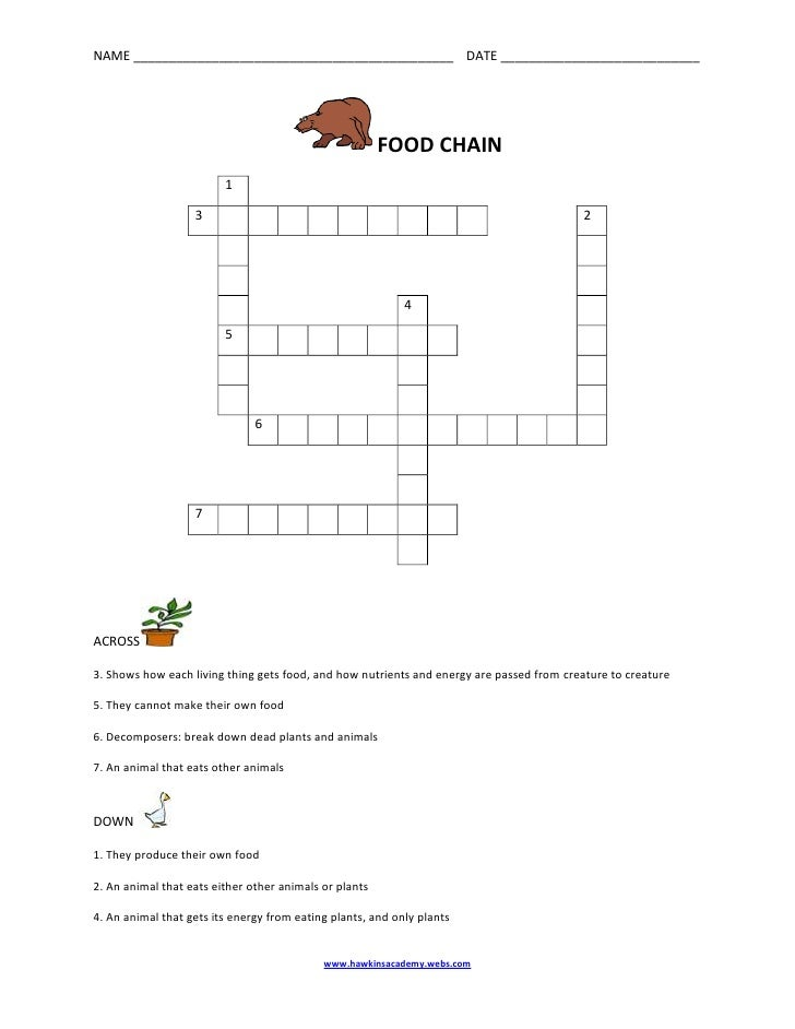 FOOD CHAIN<br /> 1            3            2                                   4       5                                 ...