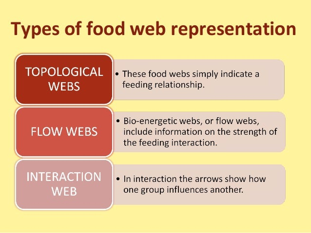 food chain food web and ecological Title of unit: ecological biomes and human impact on the environment : title of lesson plan: food chains, food webs, and pyramid of numbers : anticipated.
