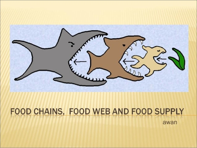 Grade 10 - Food chains, Food web and Food supply