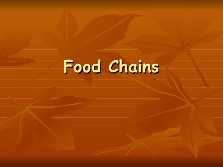 Food Chains Ppt For Ncvps on Food Chain Powerpoint