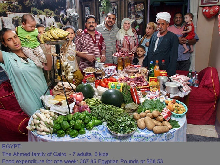 EGYPT:  The Ahmed family of Cairo - 7 adults, 5 kids  Food expenditure for one week: 387.85 Egyptian Pounds or $68.53