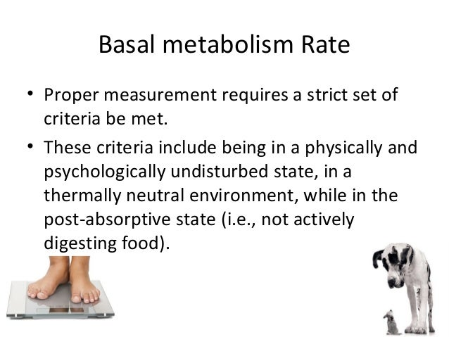 understanding the absorptive and post absorptive states during meals Study 1403 week 6 -tutorial worksheet flashcards play games, take quizzes what is the key trigger for the switch between absorptive and post-absorptive states blood glucose levels drive the requirement for catabolism or anabolism that occur during these states.
