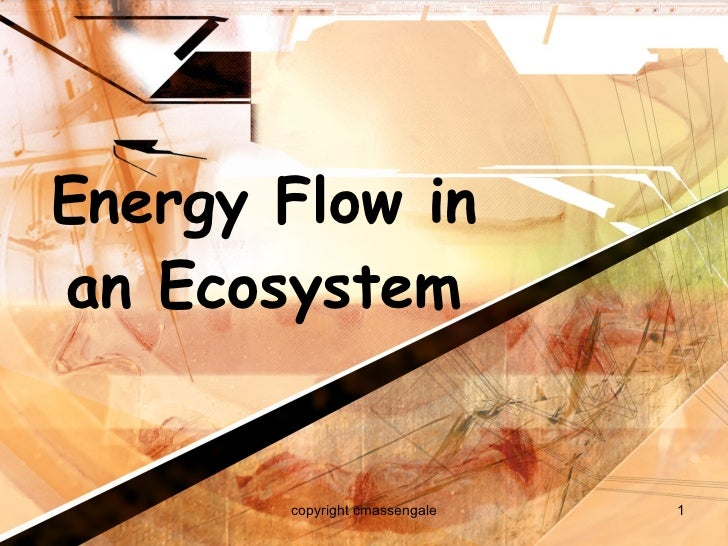 Energy Flow in an Ecosystem copyright cmassengale
