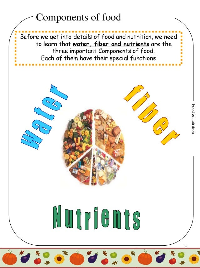 Food & Nutrition Project for 4th graders