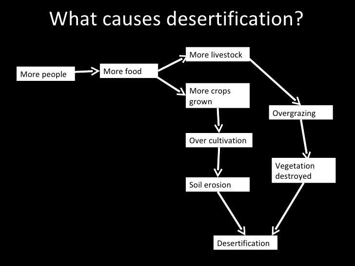 food, glorious food! overgrazing diagram  #7